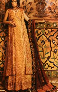 Light Gold Double Layer Gown Lehnga