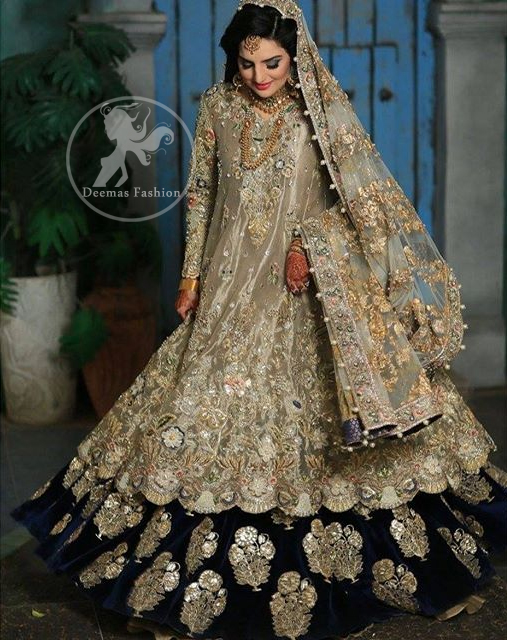 Light Fawn Fully Embroidered Double Layer Pishwash Dupatta with Golden Lehenga