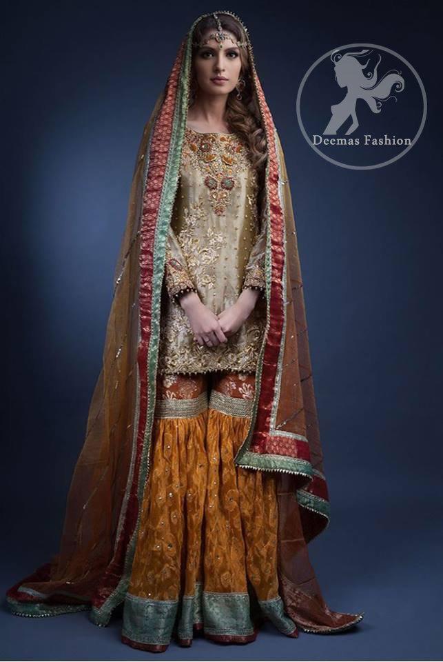 Multiple Color Traditional Mehndi Wear Gharara