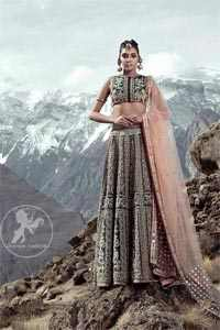 Cocoa Brown Blouse Lehengha Tan Dupatta