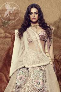 Indian Khaki Double Layered Lehengha Blouse Net Dupatta