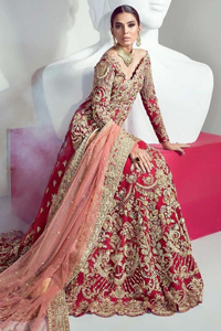 Red Back Train Lehenga Shirt – Tea Rose Dupatta